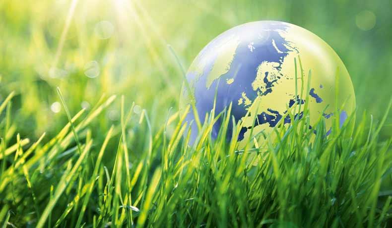 Globus im Gras