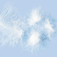 Garnissages d'oreiller (plumes/duvet)