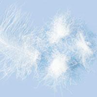 Enchimentos de almofadas – penas/plumas