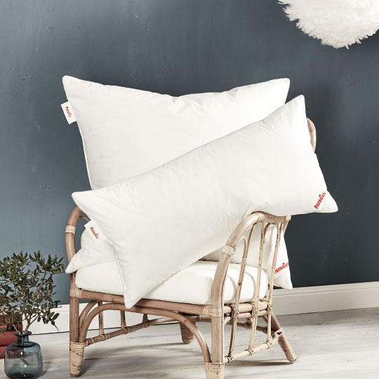 kissen 40x40 daunen amazing mehr ansichten previous kissen kopfkissen x daunen with kissen. Black Bedroom Furniture Sets. Home Design Ideas
